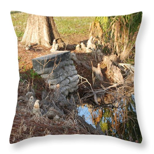 Sunset Throw Pillow featuring the photograph Lake Edge by Rob Hans