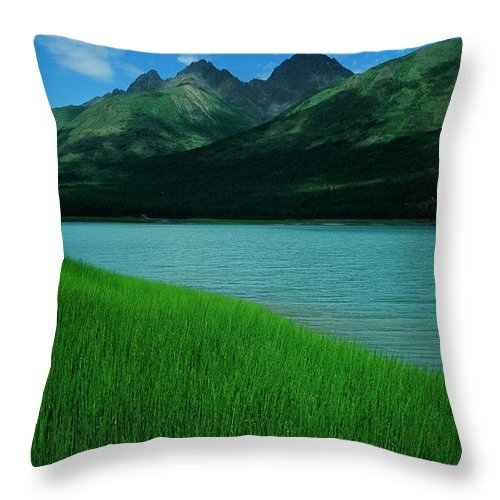 Lake Throw Pillow featuring the photograph Lake Eklutna by Ronnie Glover