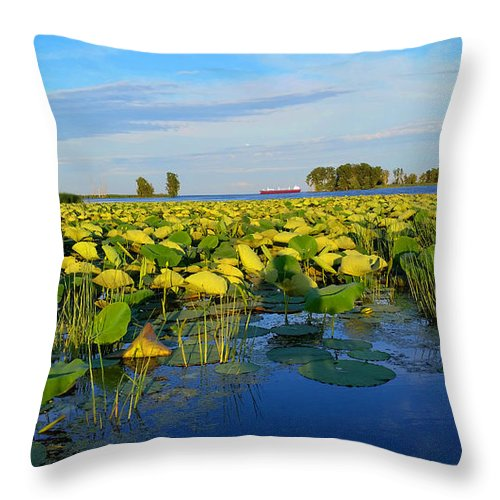 Lake Throw Pillow featuring the photograph Pointe Mouilee Lake Erie by Michael Rucker