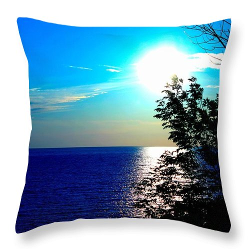 Throw Pillow featuring the photograph Lake Front by Robyn Doig