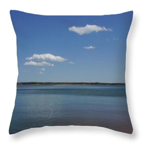 Lake Hartwell Throw Pillow featuring the photograph Lake Hartwell by Flavia Westerwelle