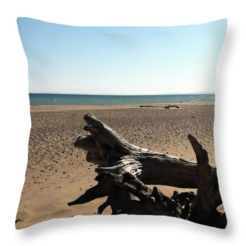 Lake Superior Throw Pillow featuring the photograph Lake Superior Driftwood by Michelle Calkins