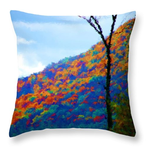 Digital Photograph Throw Pillow featuring the photograph Lakeside by David Lane