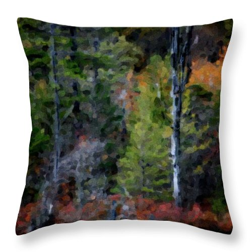 Digital Photograph Throw Pillow featuring the photograph Lakeside In The Autumn by David Lane