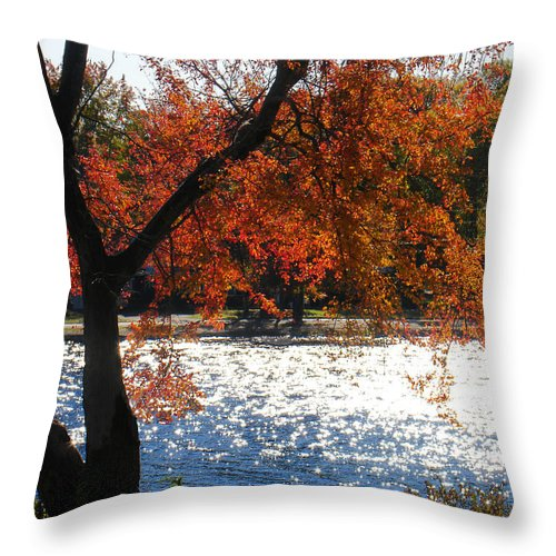 Landscape Throw Pillow featuring the photograph Lakewood by Steve Karol