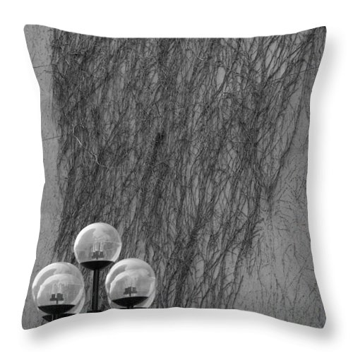 Lamp Throw Pillow featuring the photograph Lamp Post by Jessica Wakefield
