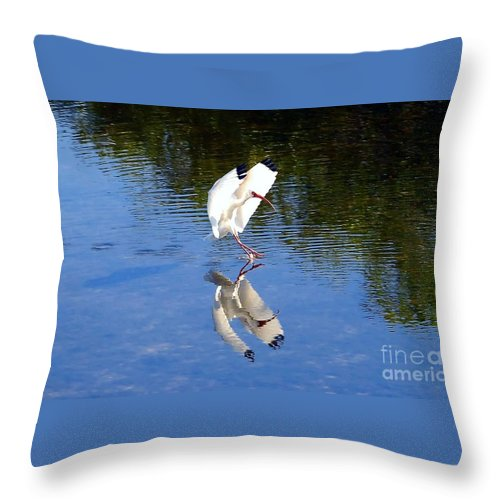 Landing Throw Pillow featuring the photograph Landing by David Lee Thompson