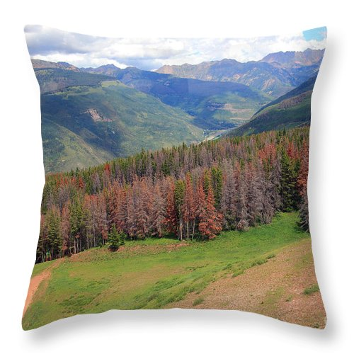 Trees Throw Pillow featuring the photograph Landscape In Vail by Madeline Ellis