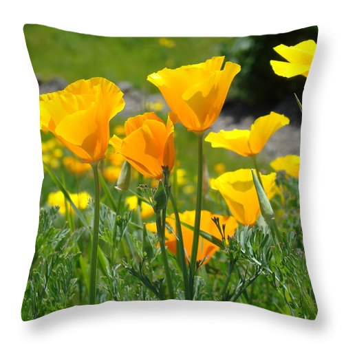 �poppies Artwork� Throw Pillow featuring the photograph Landscape Poppy Flowers 5 Orange Poppies Hillside Meadow Art by Baslee Troutman