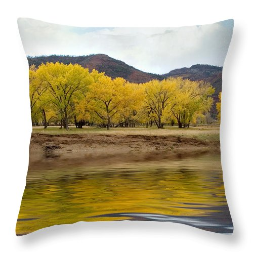 River Throw Pillow featuring the photograph Las Animas Fall by Jerry McElroy