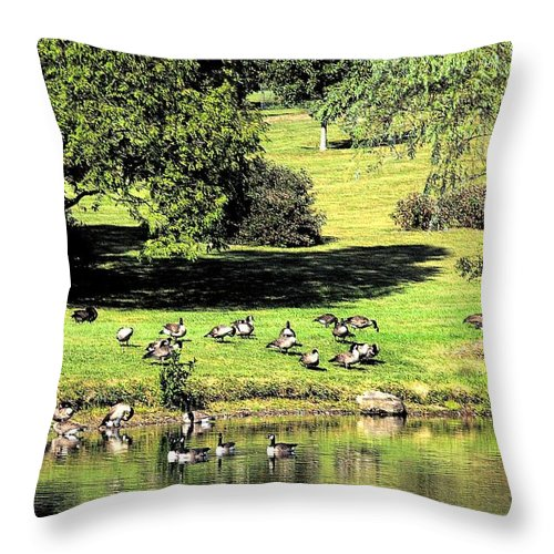 Bird Throw Pillow featuring the photograph Last Days Of Summer by Gaby Swanson