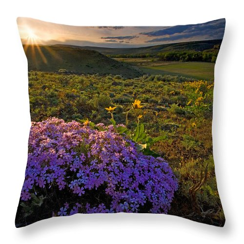Wildflowers Throw Pillow featuring the photograph Last Light Of Spring by Mike Dawson