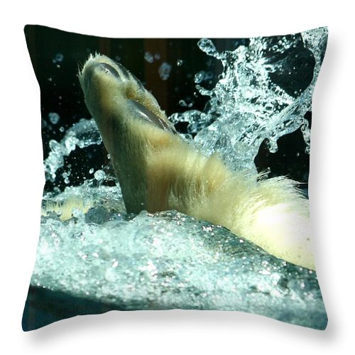 Polar Bear Throw Pillow featuring the photograph Last Paw In Is A Rotten Egg by David Dunham