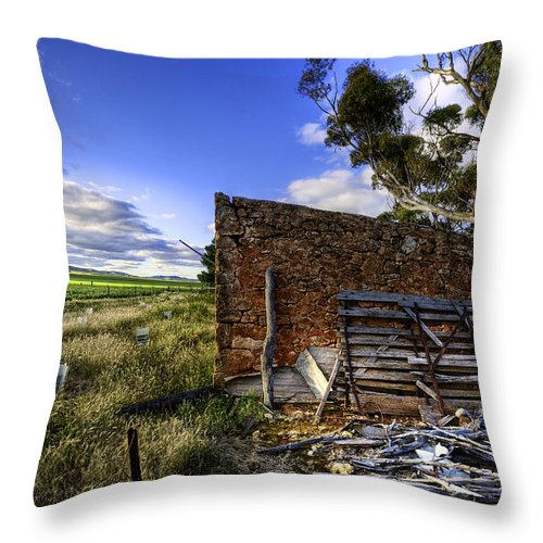 Farm Throw Pillow featuring the photograph Late Afternoon by Wayne Sherriff