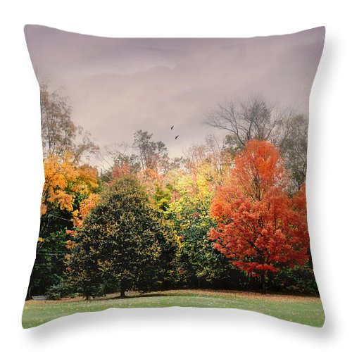 Nature Throw Pillow featuring the photograph Late October by Diana Angstadt