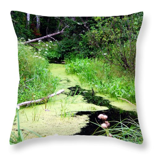 Pine Falls Manitoba Creek Water Throw Pillow featuring the photograph Late Summer At The Creek by Joanne Smoley