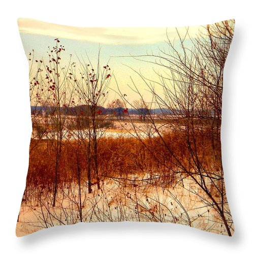 Winter Throw Pillow featuring the photograph Late Winter at Emiquon by Helen ONeal