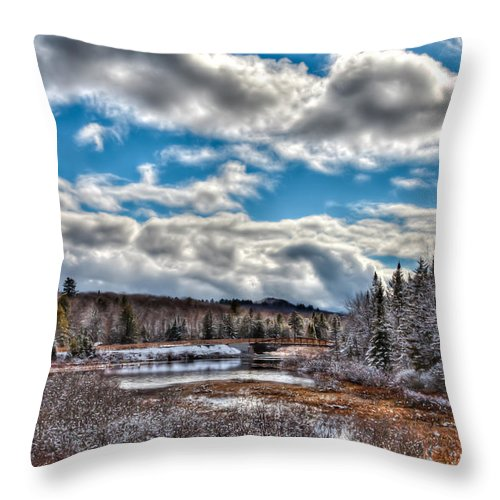 Late Winter At The Tobie Trail Bridge Throw Pillow featuring the photograph Late Winter At The Tobie Trail Bridge by David Patterson