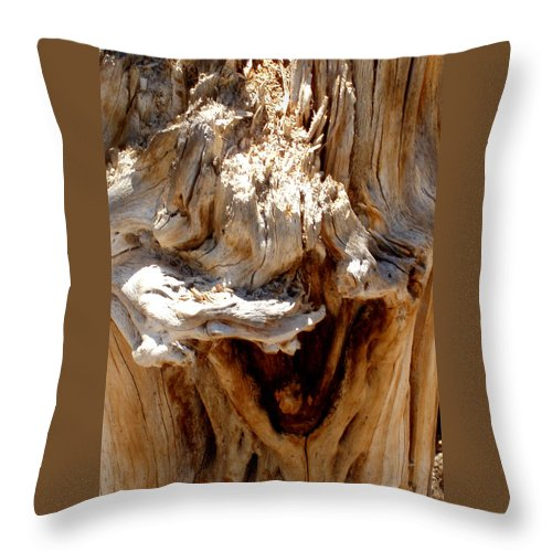 Tree Throw Pillow featuring the photograph Laughing Tree by Wayne Potrafka