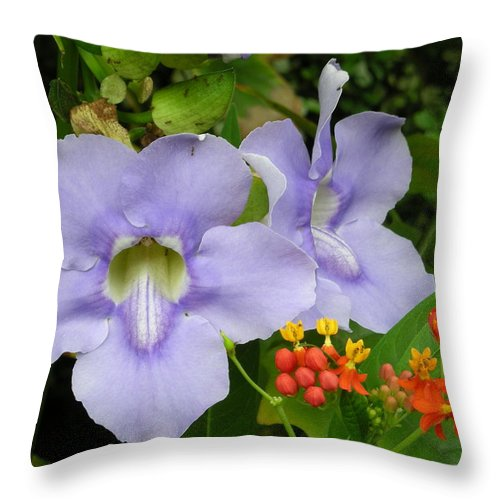 Flower Throw Pillow featuring the photograph Lavender And Orange At Noon by Brian Hoover