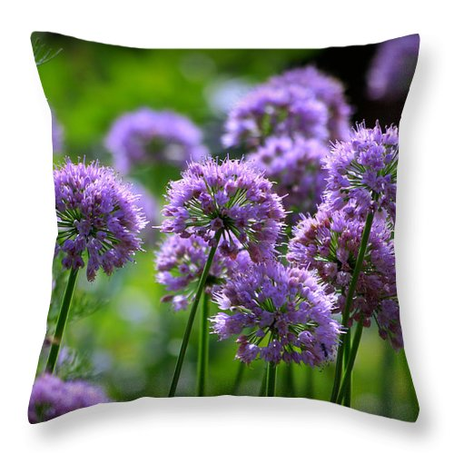 Flowers Throw Pillow featuring the photograph Lavender Breeze by Linda Mishler