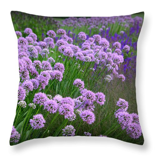 Lavender Throw Pillow featuring the photograph Lavender Field by Linda Mishler
