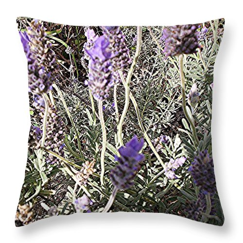Lavender Throw Pillow featuring the digital art Lavender Moment by Winsome Gunning