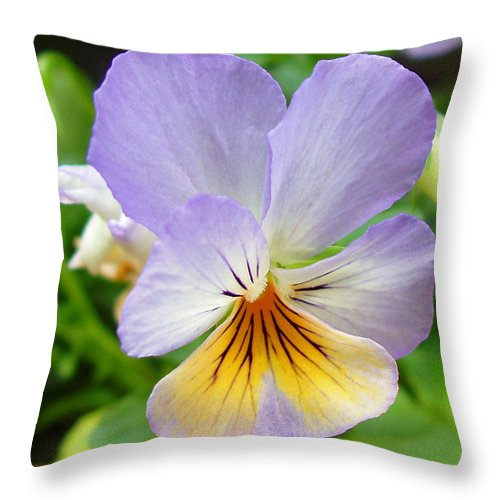 Pansy Throw Pillow featuring the photograph Lavender Pansy by Nancy Mueller