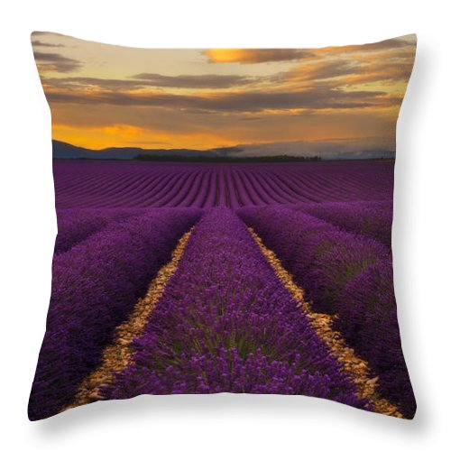 Dream Throw Pillow featuring the photograph Lavender Provence by Andre Distel