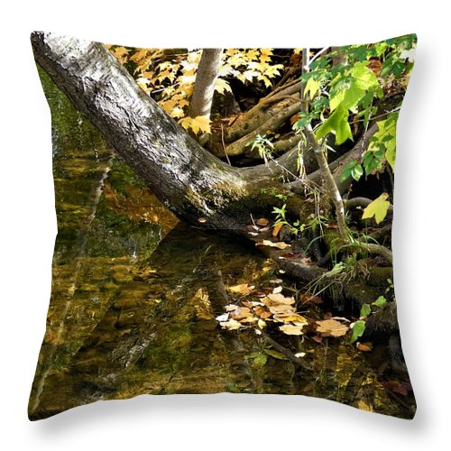 Spencer Gorge Ontario Reflection Autumn Leaves Yellow Throw Pillow featuring the photograph Layered Reflections by The Sangsters