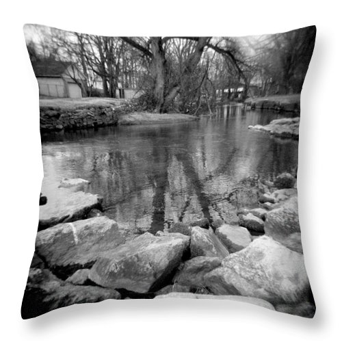 Photograph Throw Pillow featuring the photograph Le Tort Reflection by Jean Macaluso