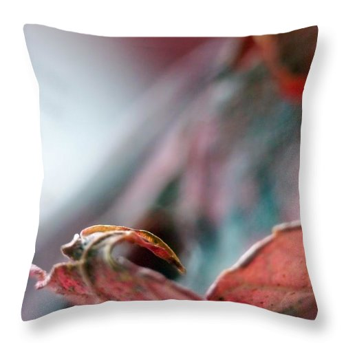 Abstract Throw Pillow featuring the photograph Leaf Abstract I by Lauren Radke