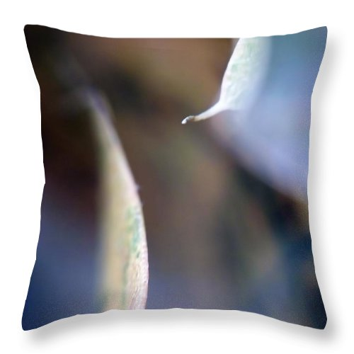 Abstract Throw Pillow featuring the photograph Leaf Abstract IIi by Lauren Radke