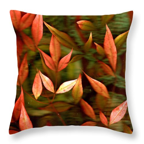 Leaves Throw Pillow featuring the photograph Leaf Collage Photo by Wayne Potrafka