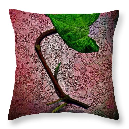 Ebsq Throw Pillow featuring the photograph Leaf by Dee Flouton