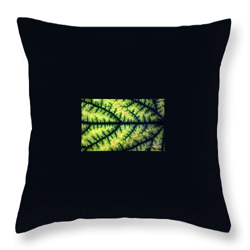 Leaf Throw Pillow featuring the photograph Leaf by Dragica Micki Fortuna