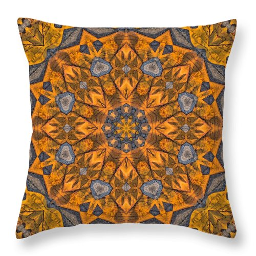 Kaleidoscope Throw Pillow featuring the photograph Leaf Glow by Lyle Hatch