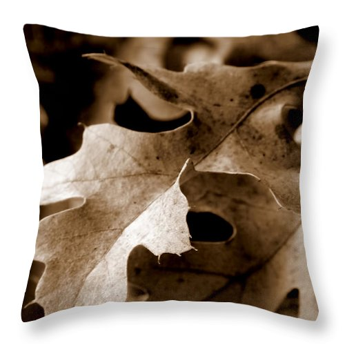 Macro Throw Pillow featuring the photograph Leaf Study In Sepia IIi by Lauren Radke