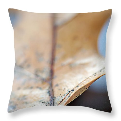 Abstract Throw Pillow featuring the photograph Leaf Study Vii by Lauren Radke