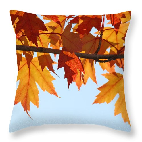 Autumn Throw Pillow featuring the photograph Leaves Autumn Orange Sunlit Fall Leaves Blue Sky Baslee Troutman by Baslee Troutman