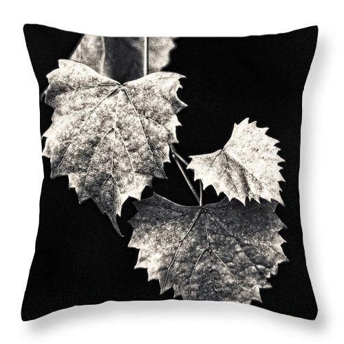 B&w Throw Pillow featuring the photograph Leaves by Christopher Holmes