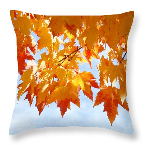 Autumn Throw Pillow featuring the photograph Leaves Nature Art Orange Autumn Tree Leaves by Baslee Troutman