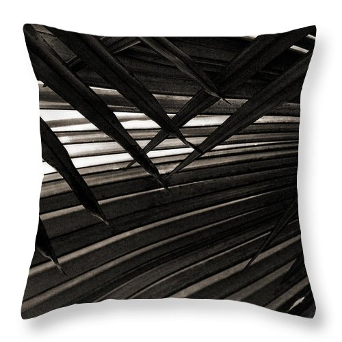 Palm Throw Pillow featuring the photograph Leaves Of Palm Black And White by Marilyn Hunt