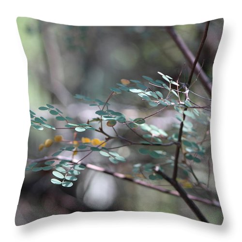 Ferny Leaves Throw Pillow featuring the photograph Leaves of the Forest by Colleen Cornelius