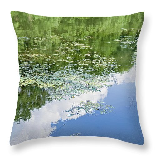 Water Throw Pillow featuring the photograph Leaves by Tom Heeter
