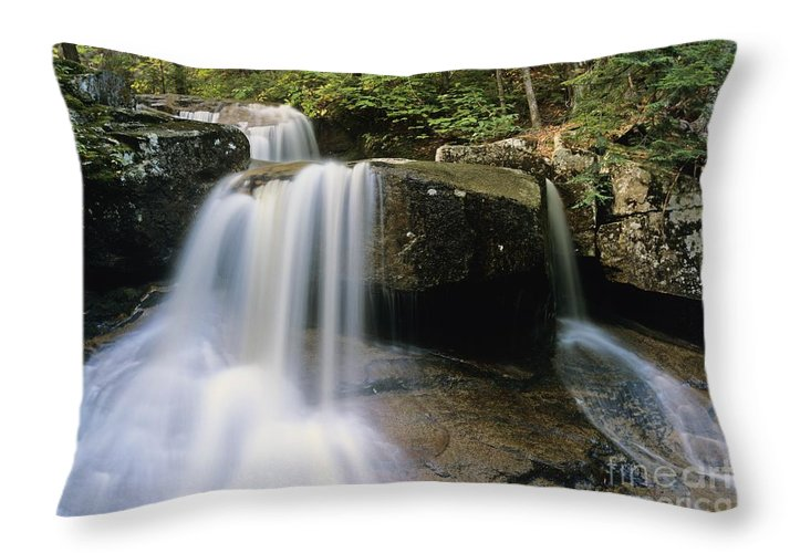 Wilderness Throw Pillow featuring the photograph Ledge Brook - White Mountains New Hampshire Usa by Erin Paul Donovan