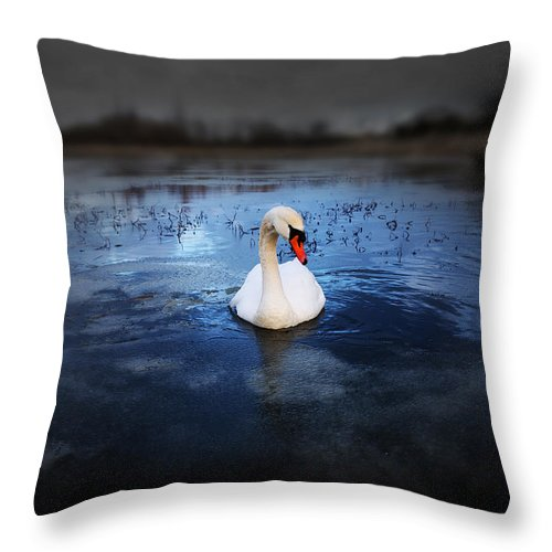 Adorable Throw Pillow featuring the photograph Left Behind by Svetlana Sewell