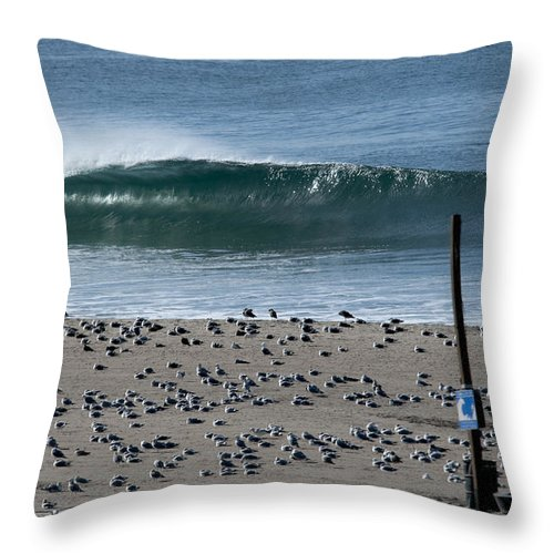 Dockwieler Throw Pillow featuring the photograph Dockwieler Beach Left by David Chatterton