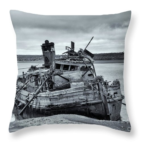 Mary D Hume Throw Pillow featuring the photograph Left To Rot by Mike Dawson