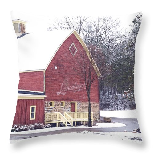 Barn Throw Pillow featuring the photograph Leinie by Tim Nyberg